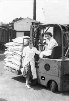 Debbie Edwards and Marian Gregson at work at the Pont Llanio Creamery.